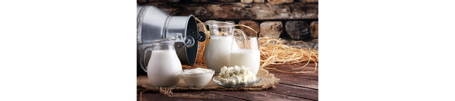 laboratoires de fromagerie