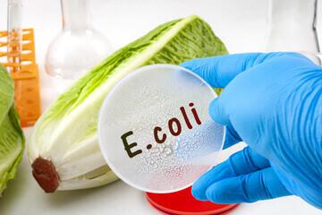 Représentation d'une personne collant une étiquette E.coli sur une endive