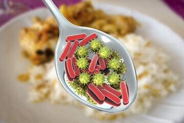 Cuillère au dessus d'une assiette contenant une représentation symbolique de microbe pour symboliser une toxi-infection alimentaire collective